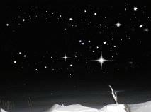 Sortie nocturne… un soir desemaine!